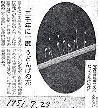 92-2s.jpg